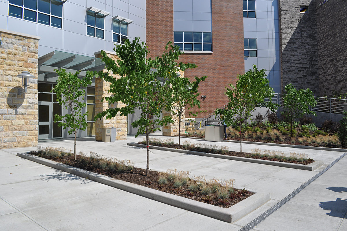 LEED Gold for SUNY Orange Rowley Center