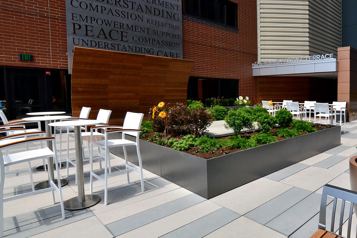 TWMLA's Roswell Roof Terrace Project Wins Upstate New York ASLA Merit Award